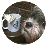 Tip jar cup with cute dog
