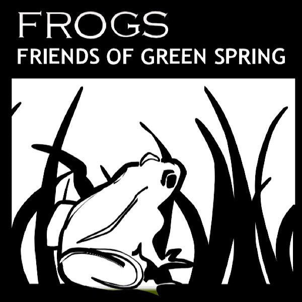a frog in grass, logo for Frogs of Green Spring