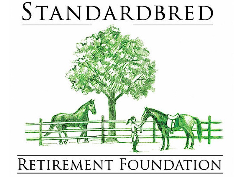 Retired Standardbred horses under a green tree, one with a saddle and a girl