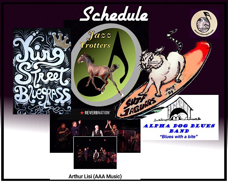 Nancy Lisi musicalhossgal music and schedule