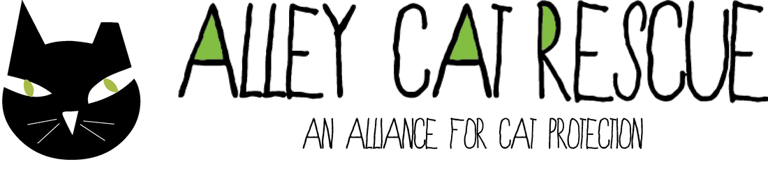 Alley Cat Rescue black cat logo with green lettering